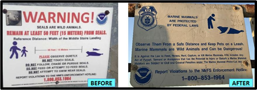 Timeline of Major Events Affecting the La Jolla Seals | Seal
